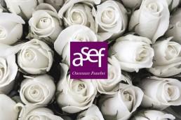 Asef logo